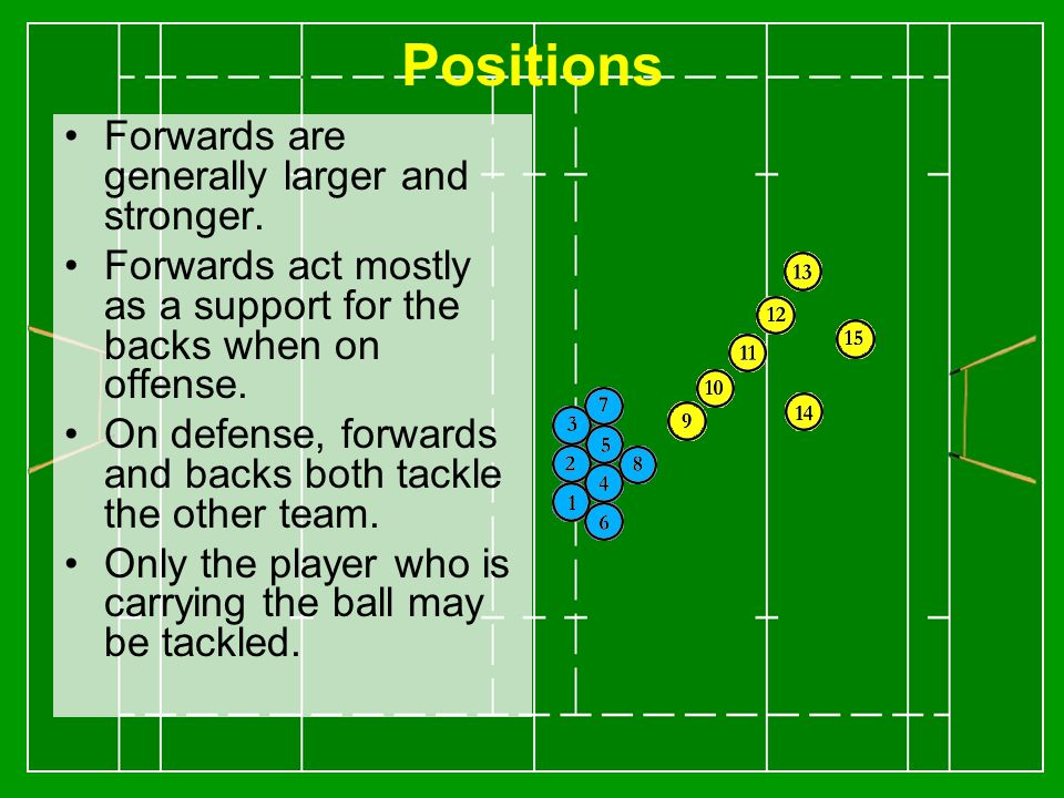 Positions Forwards are generally larger and stronger.
