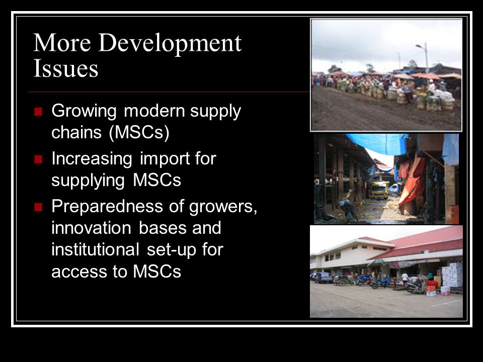 More Development Issues Growing modern supply chains (MSCs) Increasing import for supplying MSCs Preparedness of growers, innovation bases and institutional set-up for access to MSCs