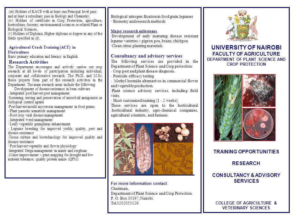 UNIVERSITY OF NAIROBI FACULTY OF AGRICULTURE DEPARTMENT OF PLANT