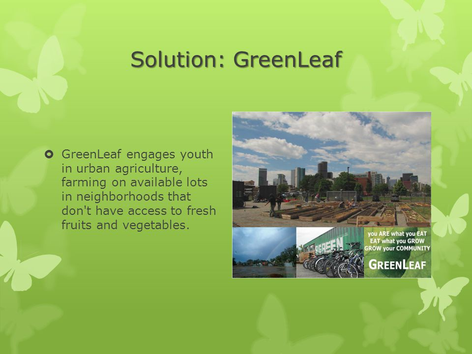 Solution: GreenLeaf  GreenLeaf engages youth in urban agriculture, farming on available lots in neighborhoods that don t have access to fresh fruits and vegetables.
