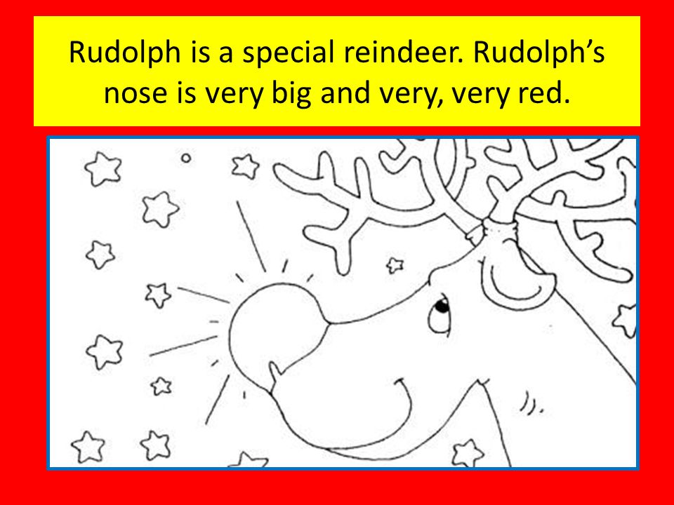 Rudolph is a special reindeer. Rudolph's nose is very big and very, very red.