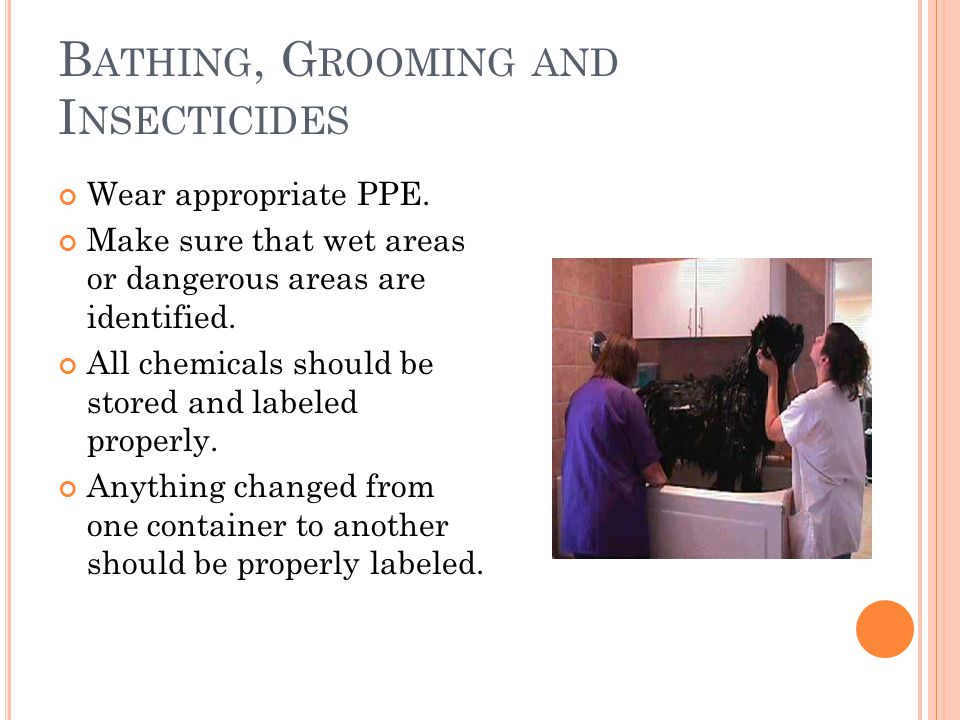 B ATHING, G ROOMING AND I NSECTICIDES Wear appropriate PPE.