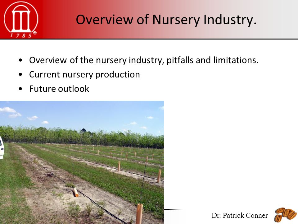 Overview Of Nursery Industry The Pitfalls And Limitations