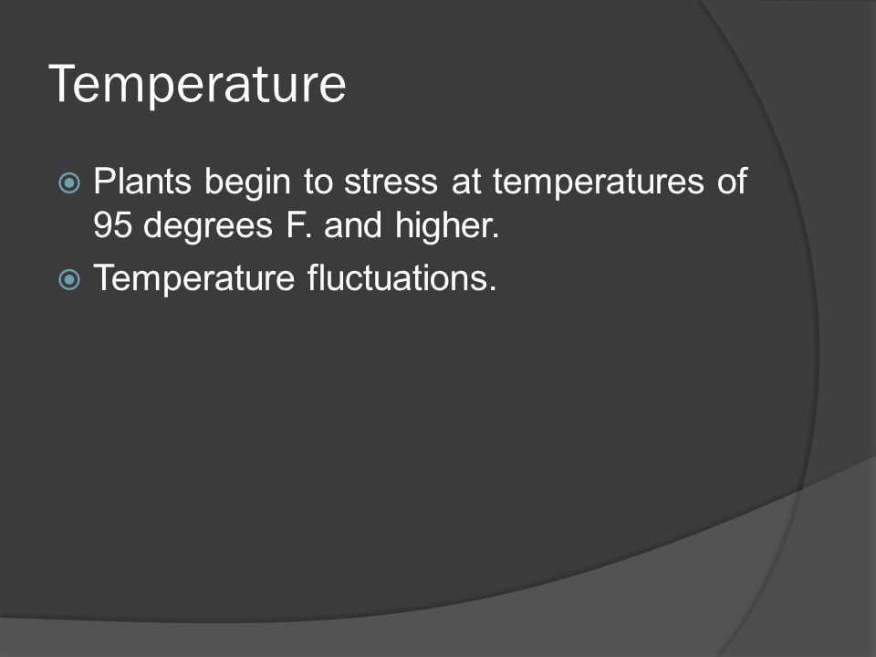 Temperature  Plants begin to stress at temperatures of 95 degrees F.
