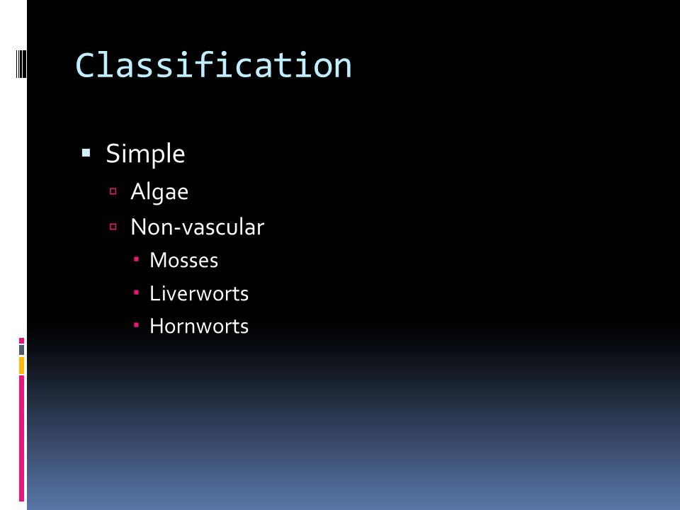 Classification  Simple  Algae  Non-vascular  Mosses  Liverworts  Hornworts