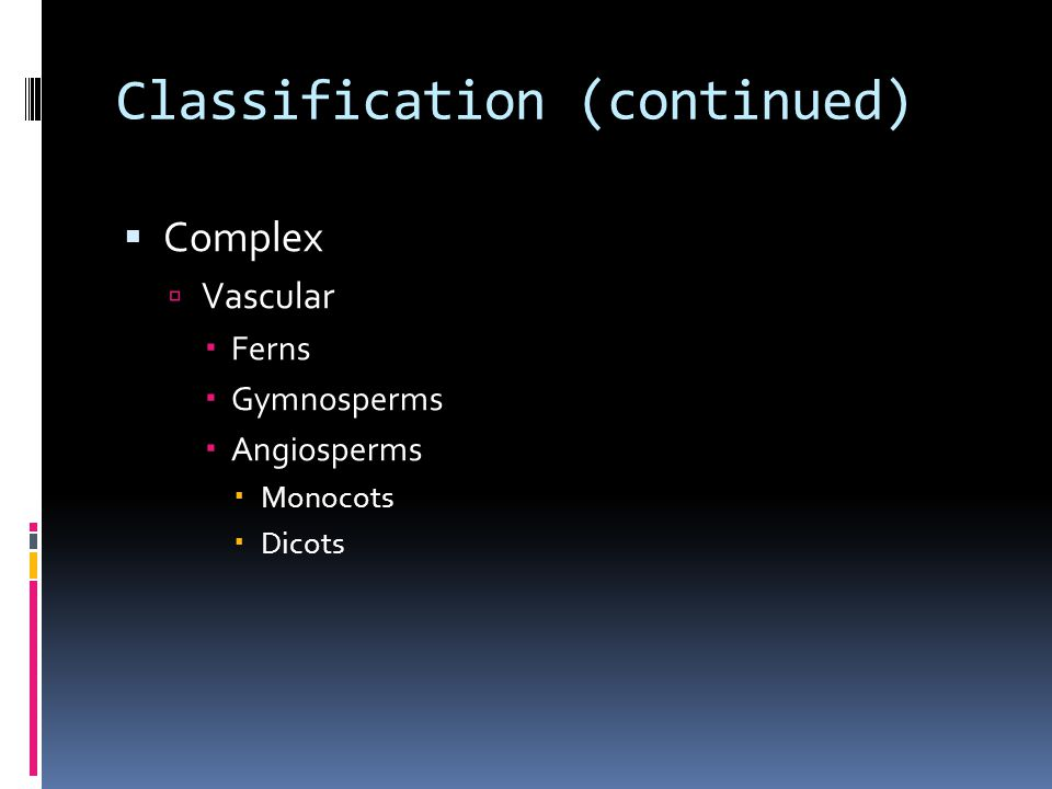 Classification (continued)  Complex  Vascular  Ferns  Gymnosperms  Angiosperms  Monocots  Dicots