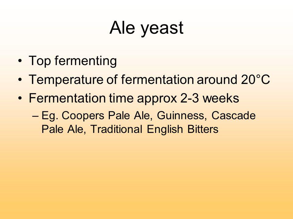 Barley to Beer The Science Behind Brewing   Ingredients of