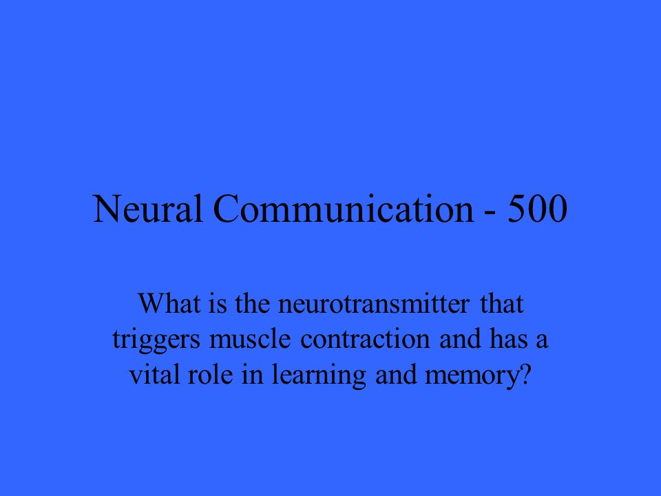 Neural Communication What is the neurotransmitter that triggers muscle contraction and has a vital role in learning and memory