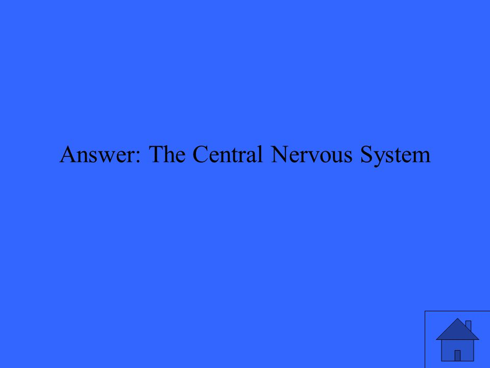 Answer: The Central Nervous System