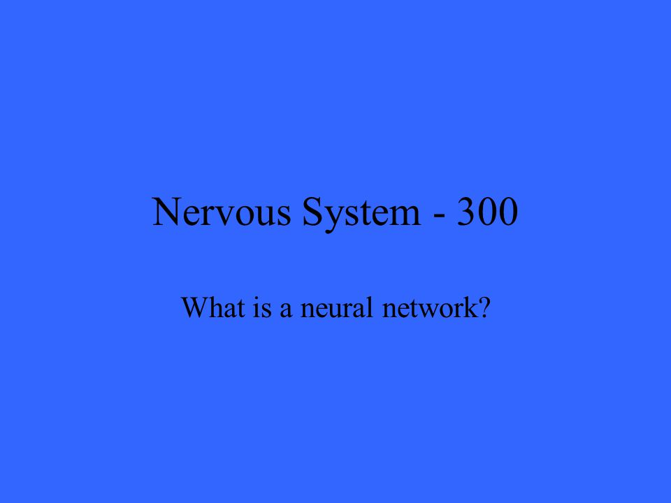 Nervous System What is a neural network