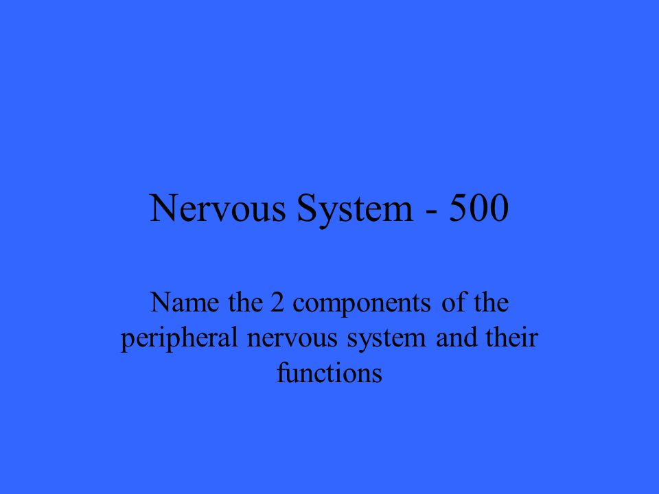Nervous System Name the 2 components of the peripheral nervous system and their functions
