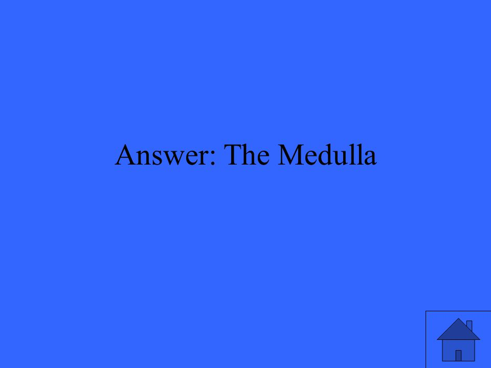 Answer: The Medulla