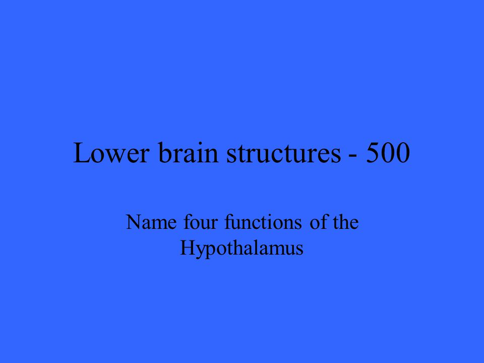 Lower brain structures Name four functions of the Hypothalamus