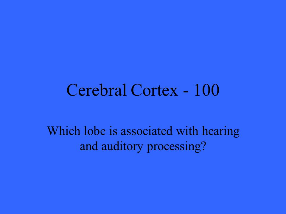 Cerebral Cortex Which lobe is associated with hearing and auditory processing