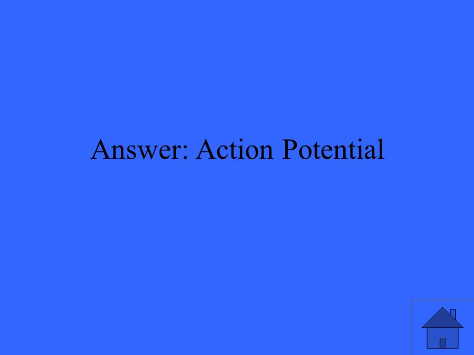 Answer: Action Potential