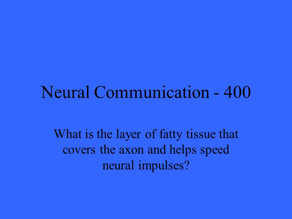 Neural Communication What is the layer of fatty tissue that covers the axon and helps speed neural impulses