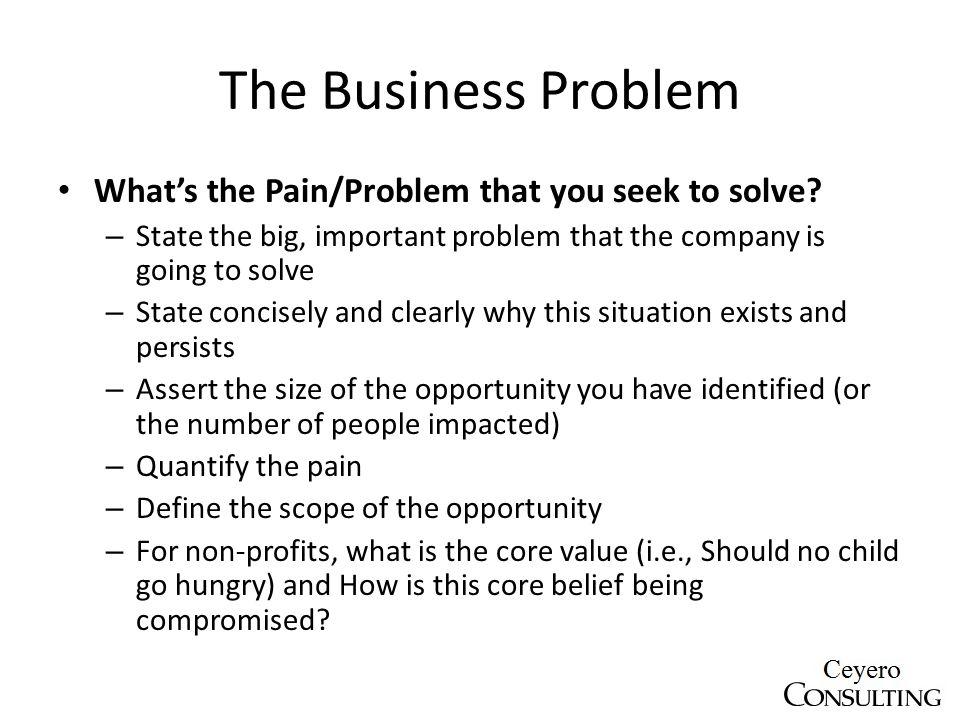 business for profit non profit pitch template ppt download