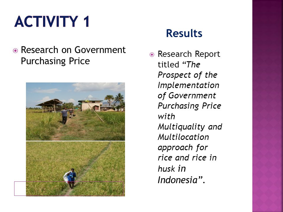 Results  Research on Government Purchasing Price  Research Report titled The Prospect of the Implementation of Government Purchasing Price with Multiquality and Multilocation approach for rice and rice in husk in Indonesia .