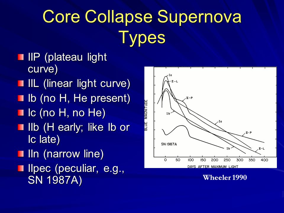 Core Collapse Supernova Types IIP (plateau light curve) IIL (linear light curve) Ib (no H, He present) Ic (no H, no He) IIb (H early; like Ib or Ic late) IIn (narrow line) IIpec (peculiar, e.g., SN 1987A) Wheeler 1990