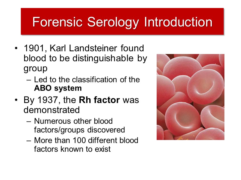 2 Forensic Serology Introduction 1901 Karl Landsteiner Found Blood To Be Distinguishable By Group Led The Classification Of ABO System 1937