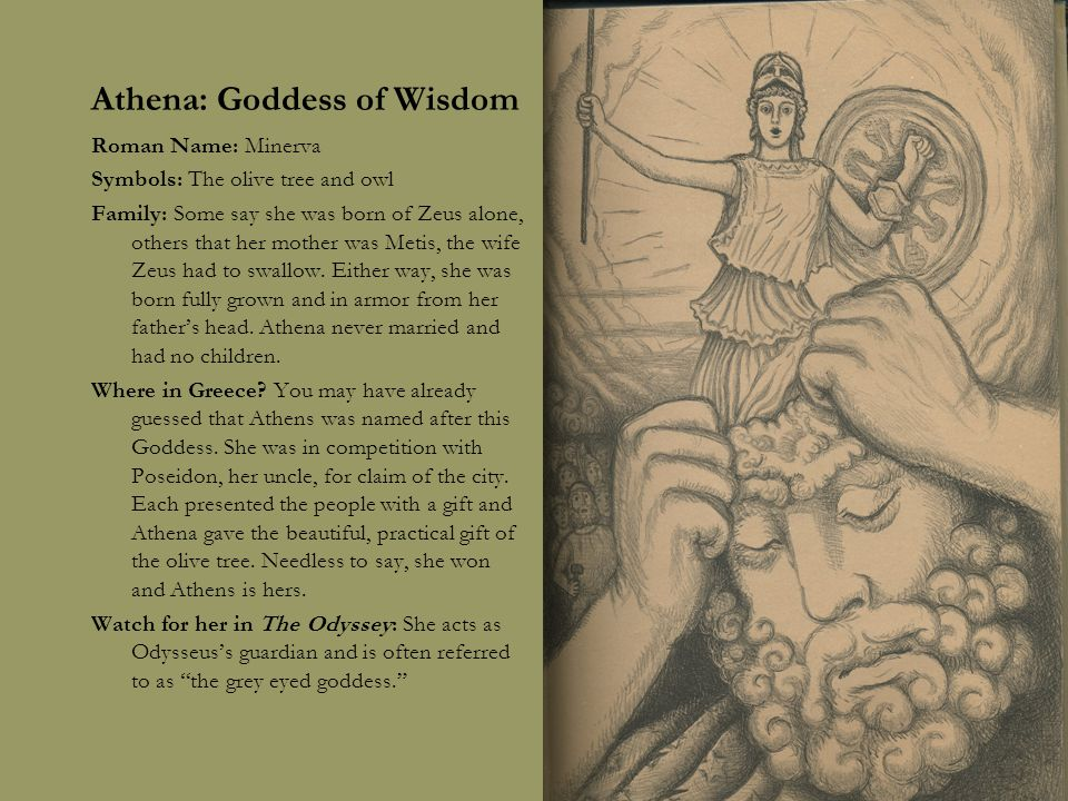 The Olympians God And Goddesses Of Ancient Greece Ppt Download