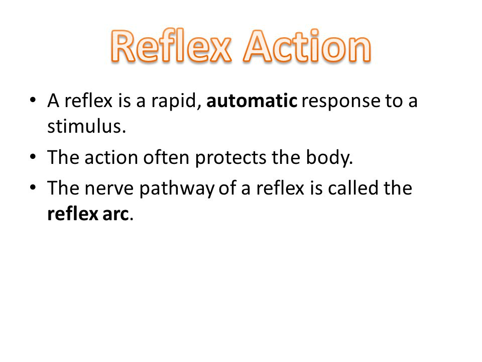 A reflex is a rapid, automatic response to a stimulus.