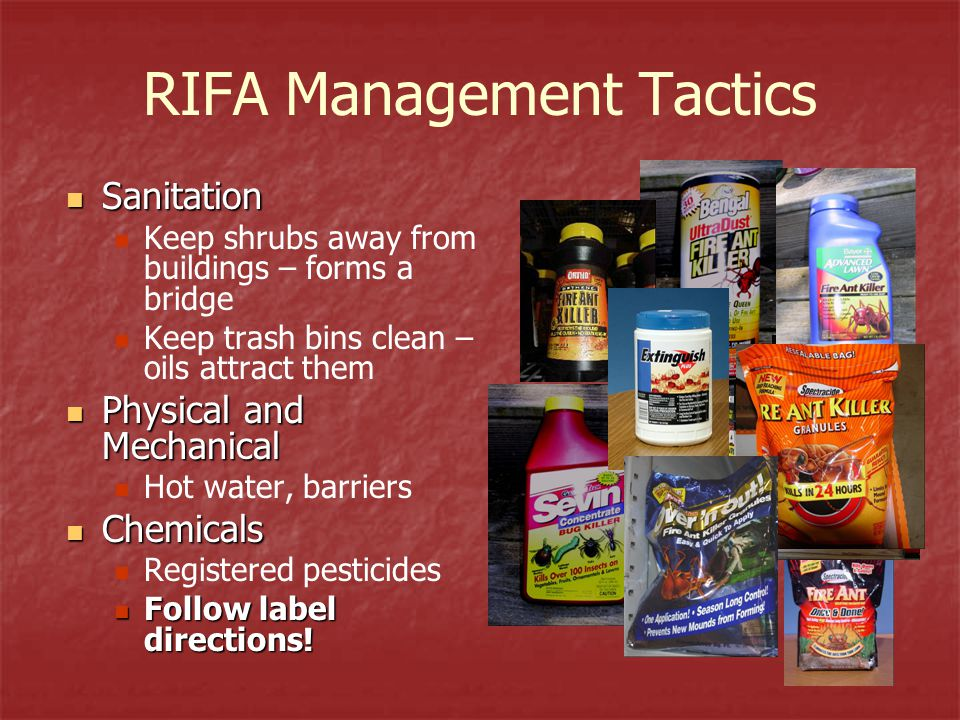 Ii B Red Imported Fire Ant Management Teaching Module For Advanced