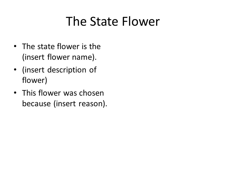 The State Flower The state flower is the (insert flower name).