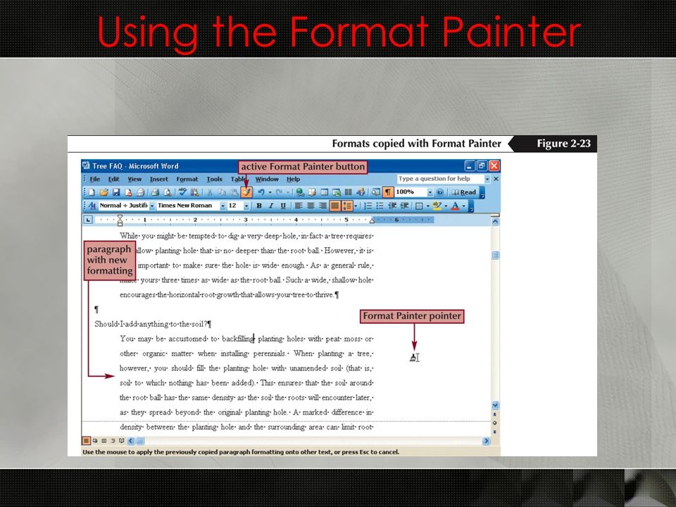 Using the Format Painter