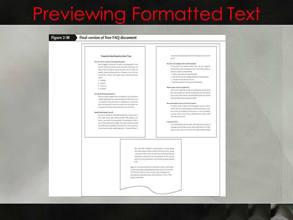 Previewing Formatted Text