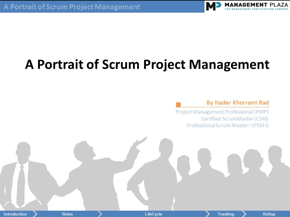 A Portrait Of Scrum Project Management By Nader Khorrami Rad Project