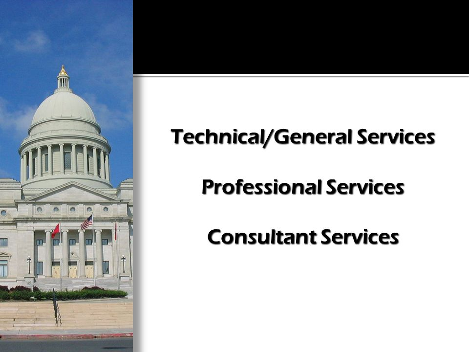 Technical/General Services Professional Services Consultant Services