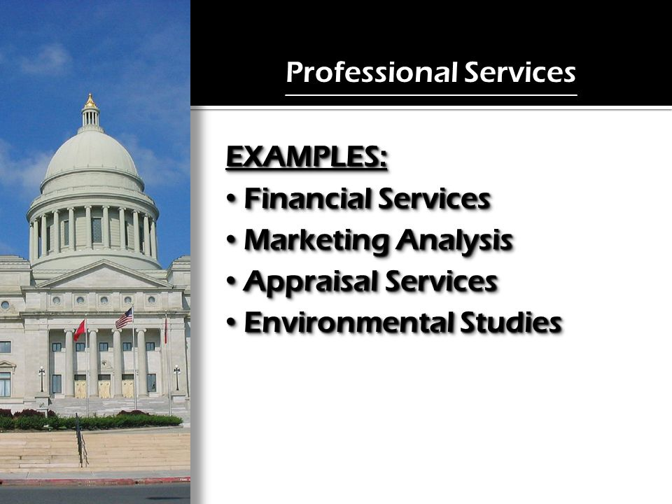 Professional Services EXAMPLES: Financial Services Financial Services Marketing Analysis Marketing Analysis Appraisal Services Appraisal Services Environmental Studies Environmental StudiesEXAMPLES: Financial Services Financial Services Marketing Analysis Marketing Analysis Appraisal Services Appraisal Services Environmental Studies Environmental Studies