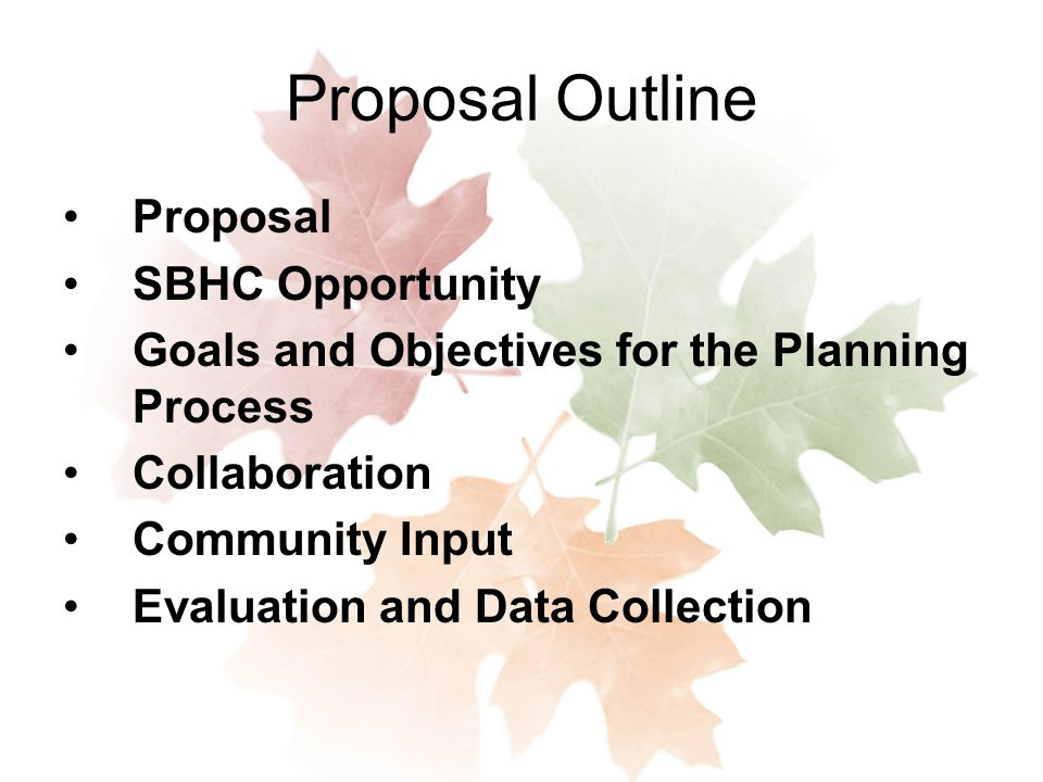 Proposal Outline Proposal SBHC Opportunity Goals and Objectives for the Planning Process Collaboration Community Input Evaluation and Data Collection