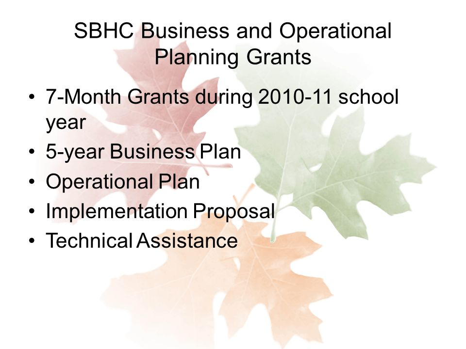 SBHC Business and Operational Planning Grants 7-Month Grants during school year 5-year Business Plan Operational Plan Implementation Proposal Technical Assistance