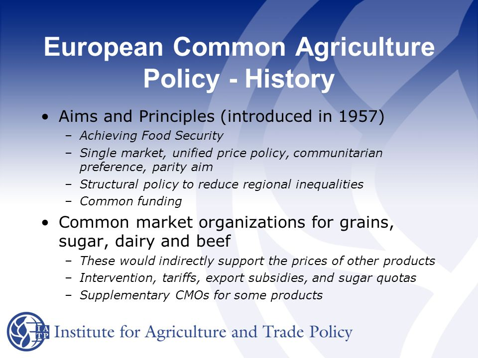 eu common commercial policy essay European trade commissioner catherine ashton was nominated as the next high representative for the european union's foreign affairs and security policy the european union's trade policy the european union created a common commercial policy to govern its trade relations with non-eu countries.