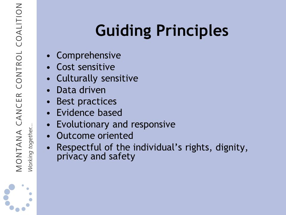 Guiding Principles Comprehensive Cost sensitive Culturally sensitive Data driven Best practices Evidence based Evolutionary and responsive Outcome oriented Respectful of the individual's rights, dignity, privacy and safety