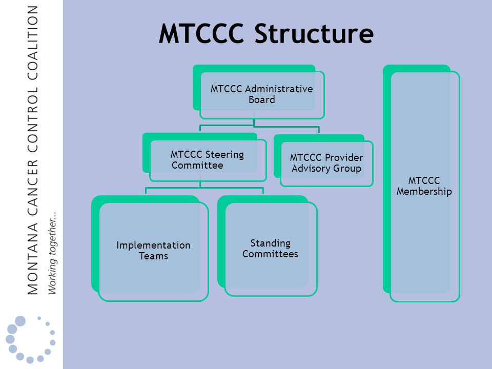 MTCCC Administrative Board MTCCC Steering Committee Implementation Teams Standing Committees MTCCC Provider Advisory Group MTCCC Membership MTCCC Structure