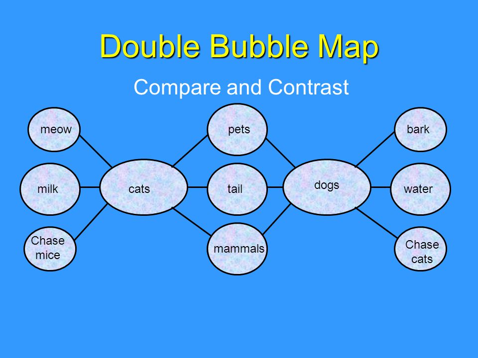 Double Bubble Map Compare and Contrast Chase cats catsmilk Chase mice water barkmeow mammals tail pets dogs