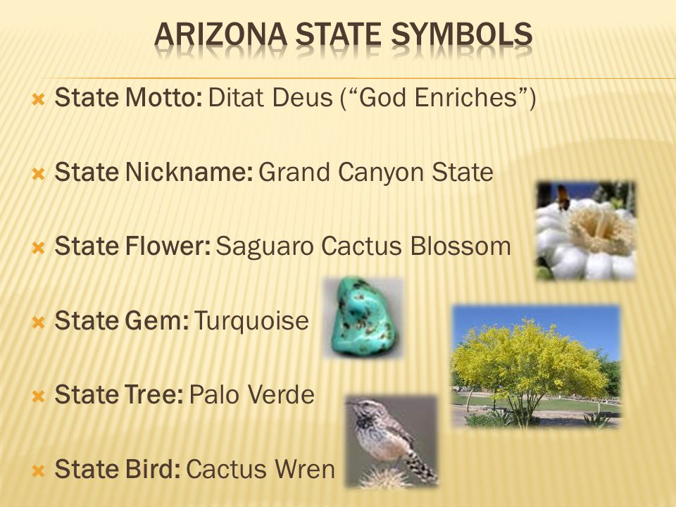 Or Azjust The Facts Arizona Became A State On February 14
