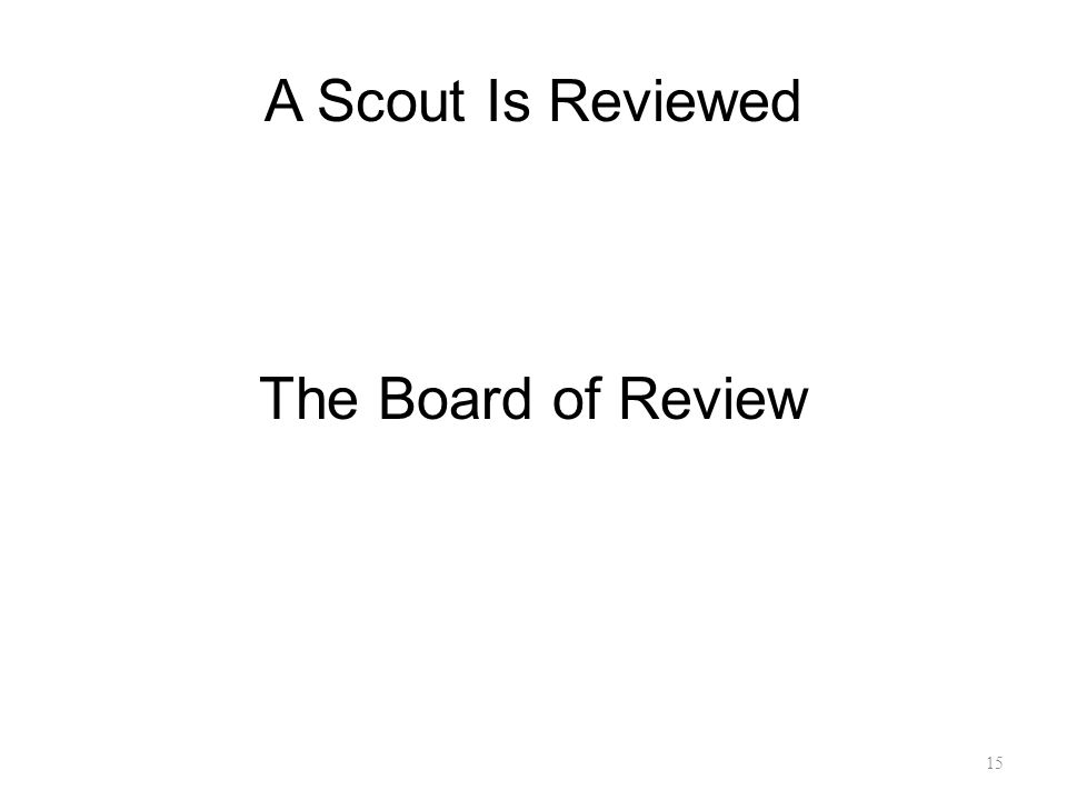 A Scout Is Reviewed The Board of Review 15