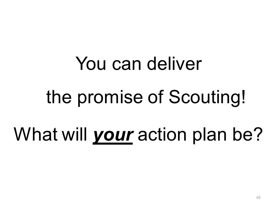 You can deliver the promise of Scouting! What will your action plan be 46