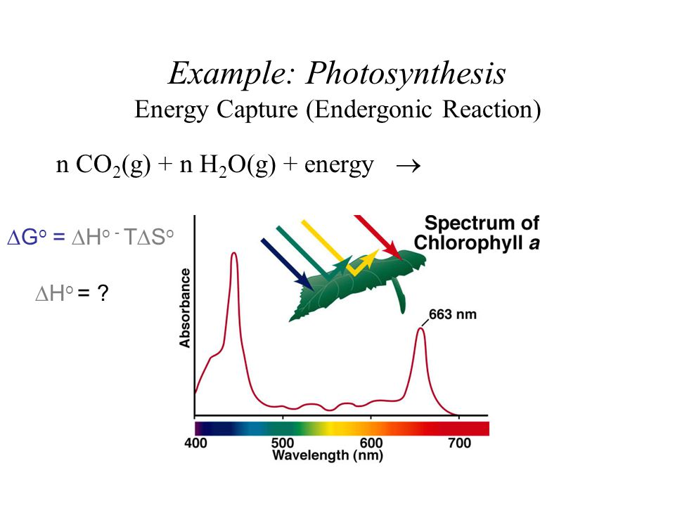 Energyreaction coordinate diagrams thermodynamics kinetics dr ron 5 example photosynthesis ccuart Choice Image