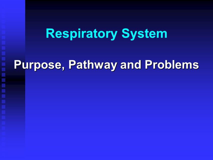 Respiratory System Purpose, Pathway and Problems