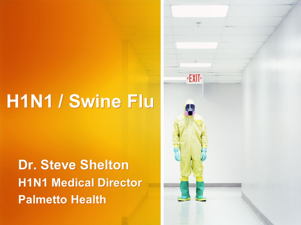 H1N1 / Swine Flu Dr. Steve Shelton H1N1 Medical Director Palmetto Health Dr.