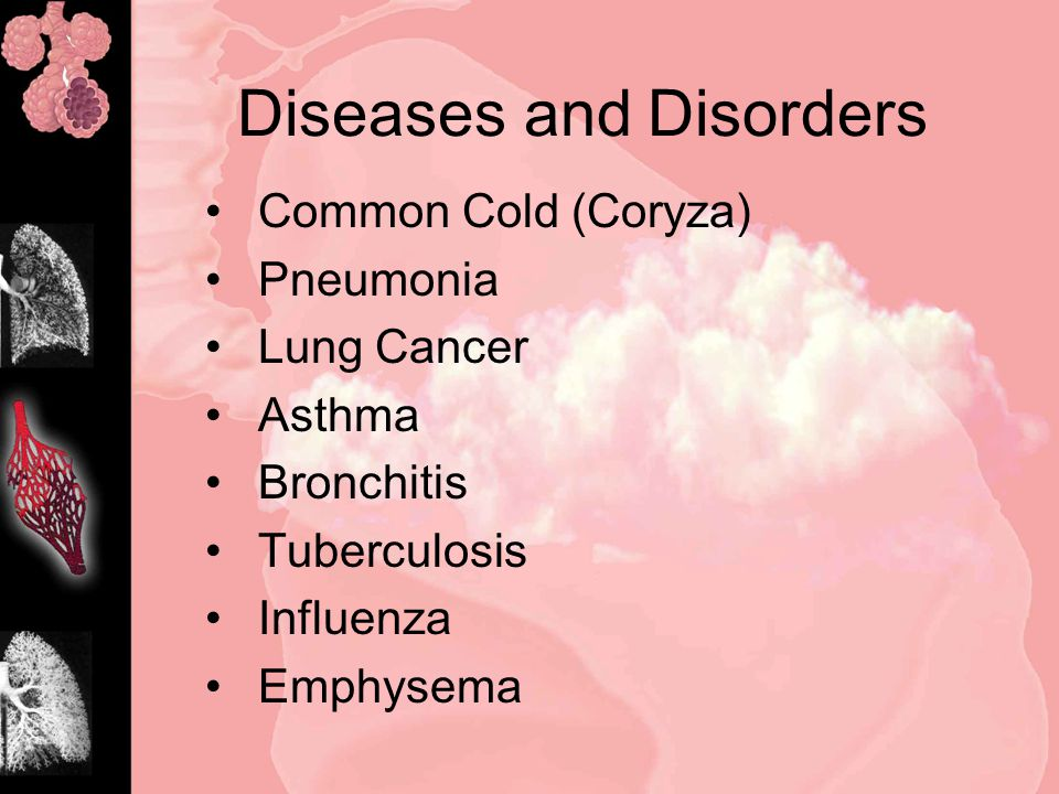 Diseases and Disorders Common Cold (Coryza) Pneumonia Lung Cancer Asthma Bronchitis Tuberculosis Influenza Emphysema