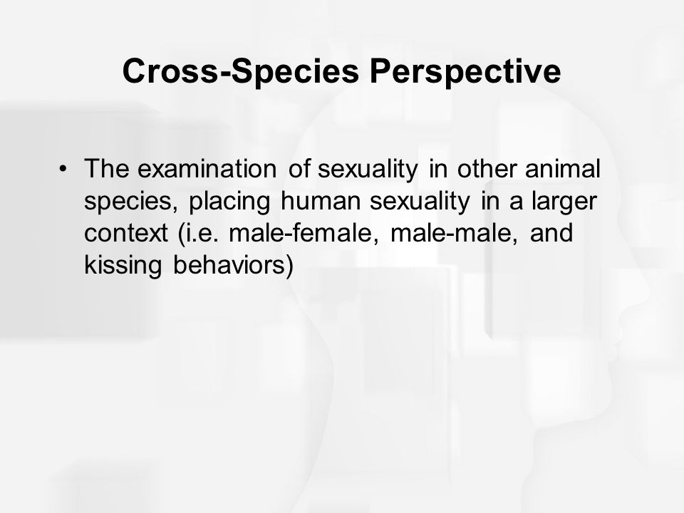 Cross species perspective human sexuality