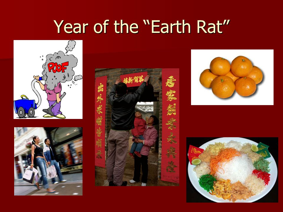 Year of the Earth Rat