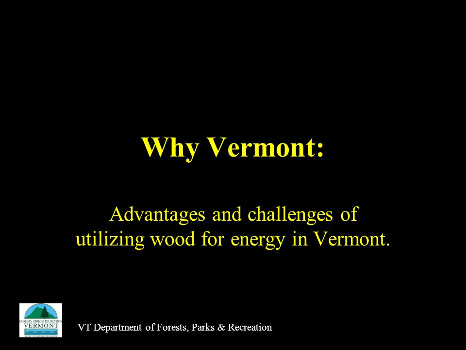 Why Vermont: Advantages and challenges of utilizing wood for energy in Vermont.