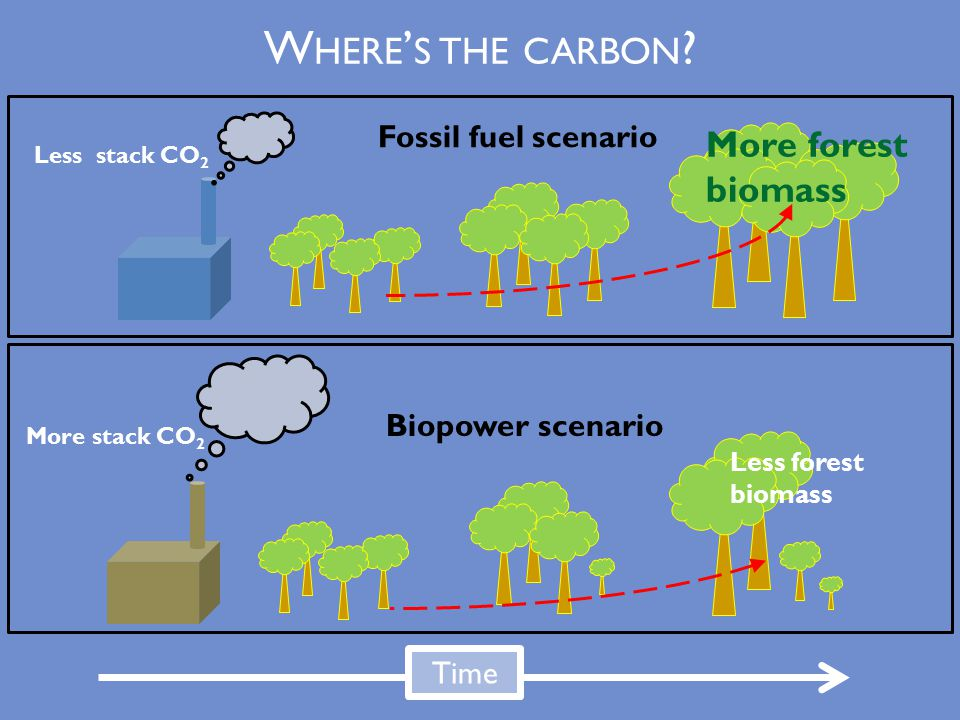 Fossil fuel scenario Biopower scenario Time Less stack CO 2 More stack CO 2 Less forest biomass More forest biomass W HERE ' S THE CARBON